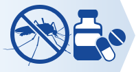 ROI Malaria Prophylaxis