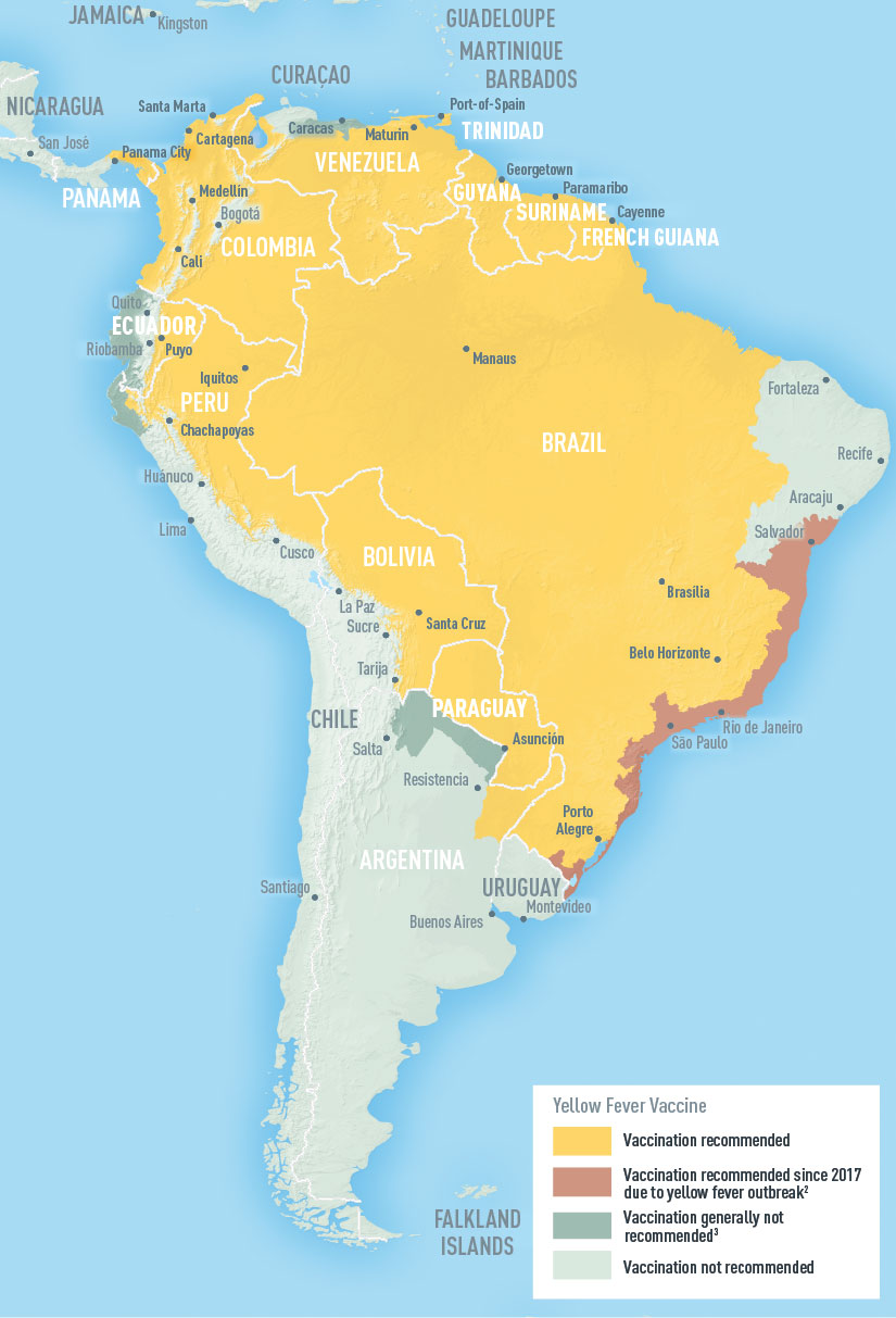 Fiebre amarilla en Sudamérica