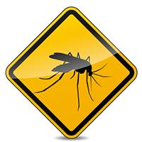 La vacuna de fiebre amarilla es obligatoria para tu viaje a Chad.