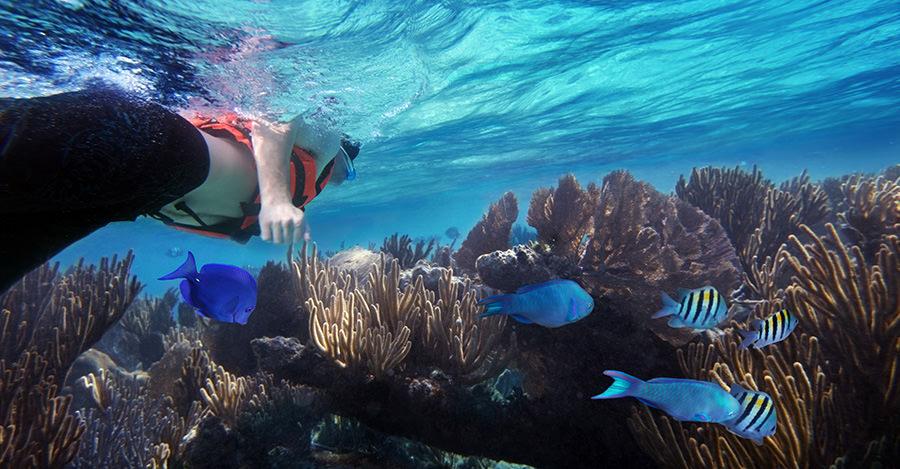 Les plages du Mexique sont très prisées des voyageurs, assurez-vous d'éviter les dangers les plus fréquents.