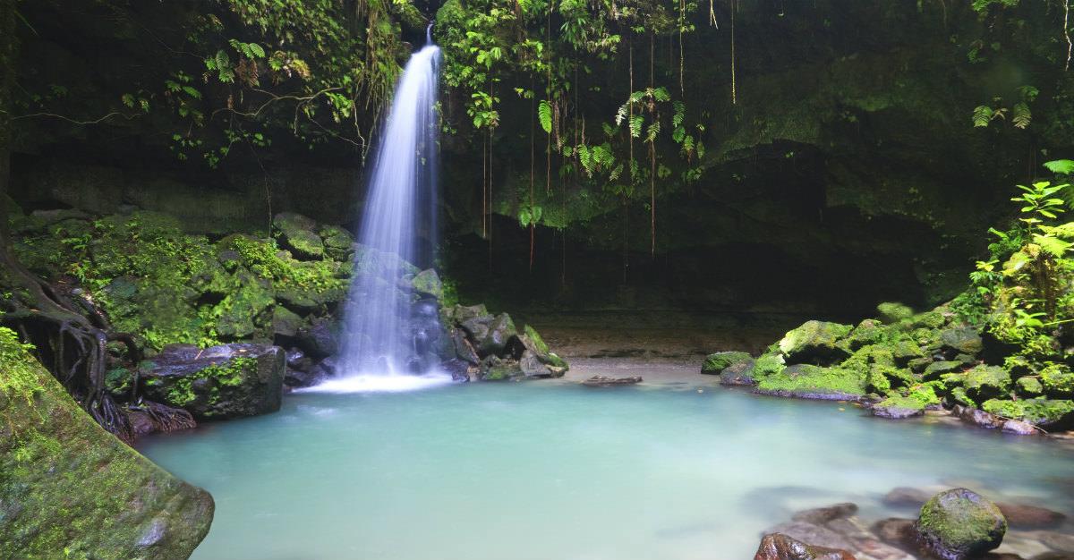 La nature intacte de la Dominique offre des caractéristiques incroyables comme les chutes d'eau et les forêts tropicales.