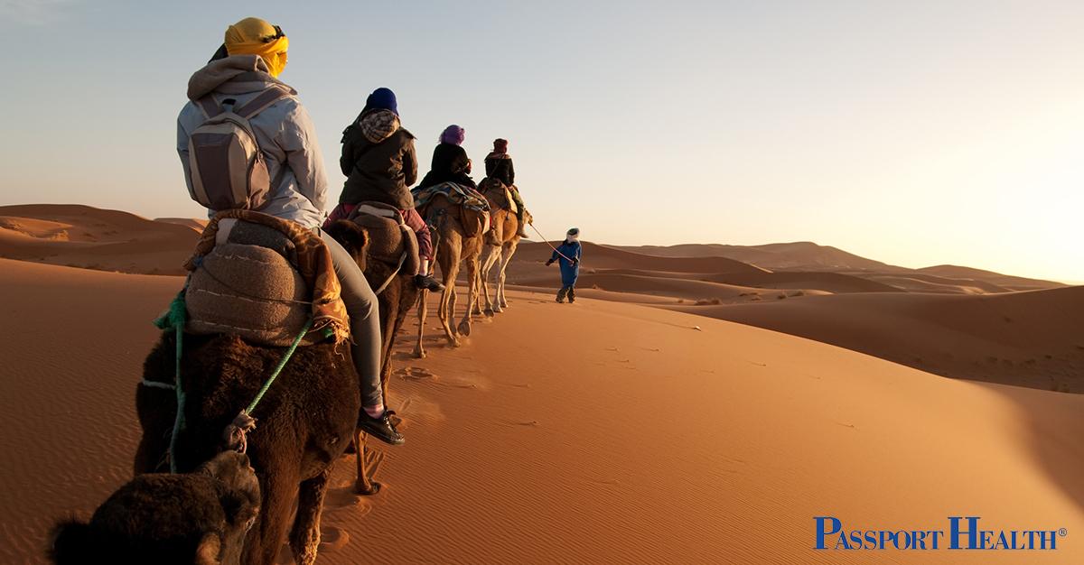 Camel trekking en Marruecos