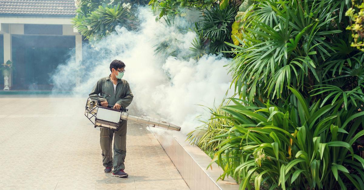 Avec plus de 100000 cas cette année, le problème de la dengue au Sri Lanka est pire que jamais auparavant.