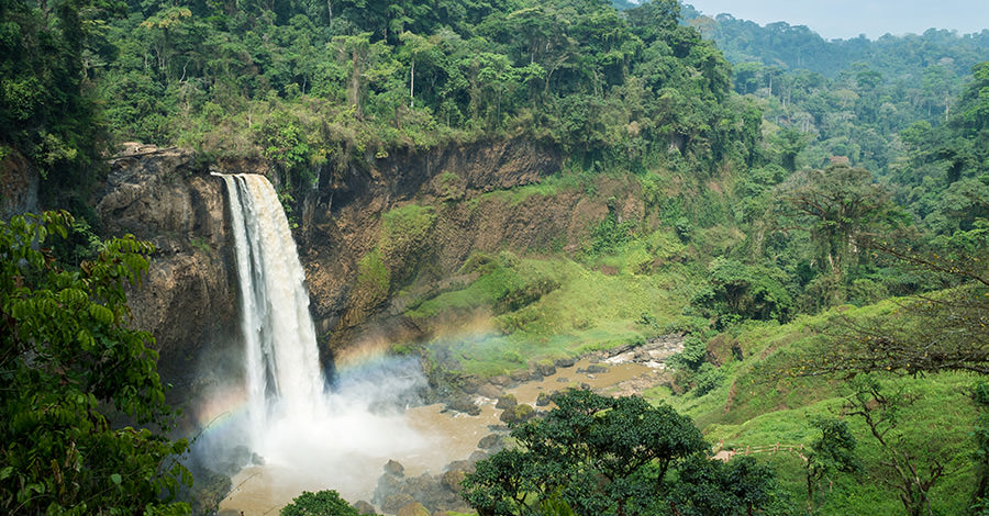 Waterfalls and jungles offer picturesque views and amazing adventures in Cameroon.