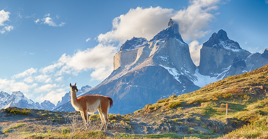On the coast of South America, Chile is a fantastic destination.
