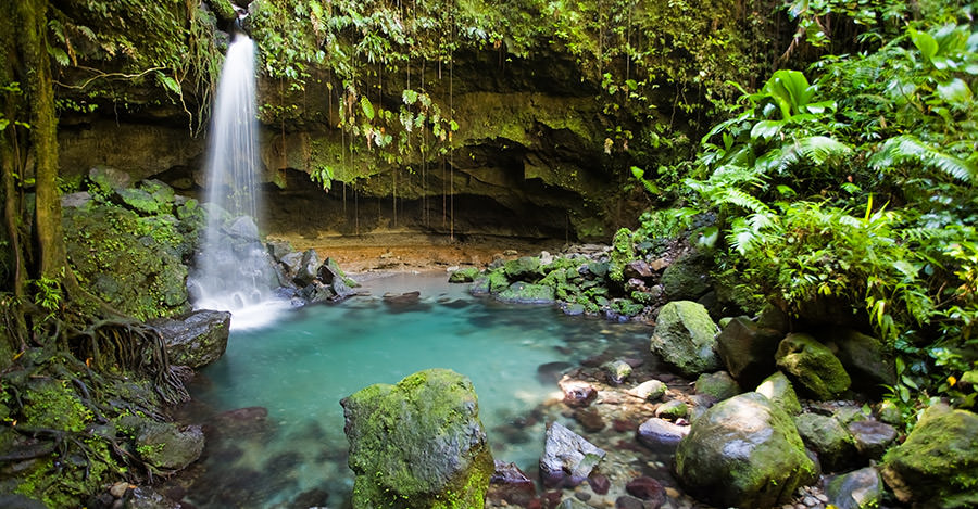 Dominica's untouched nature provides unbelievable features like waterfalls and rain forests.