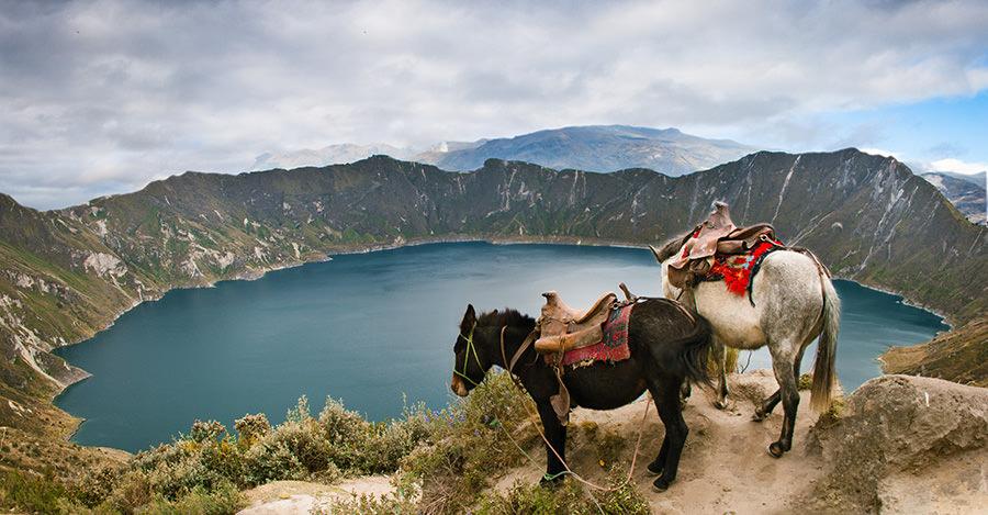 Desde las Galápagos hasta los Andes, Ecuador tiene mucho que ofrecer. Mantente seguro con tus vacunas y consulta a Passport Health.