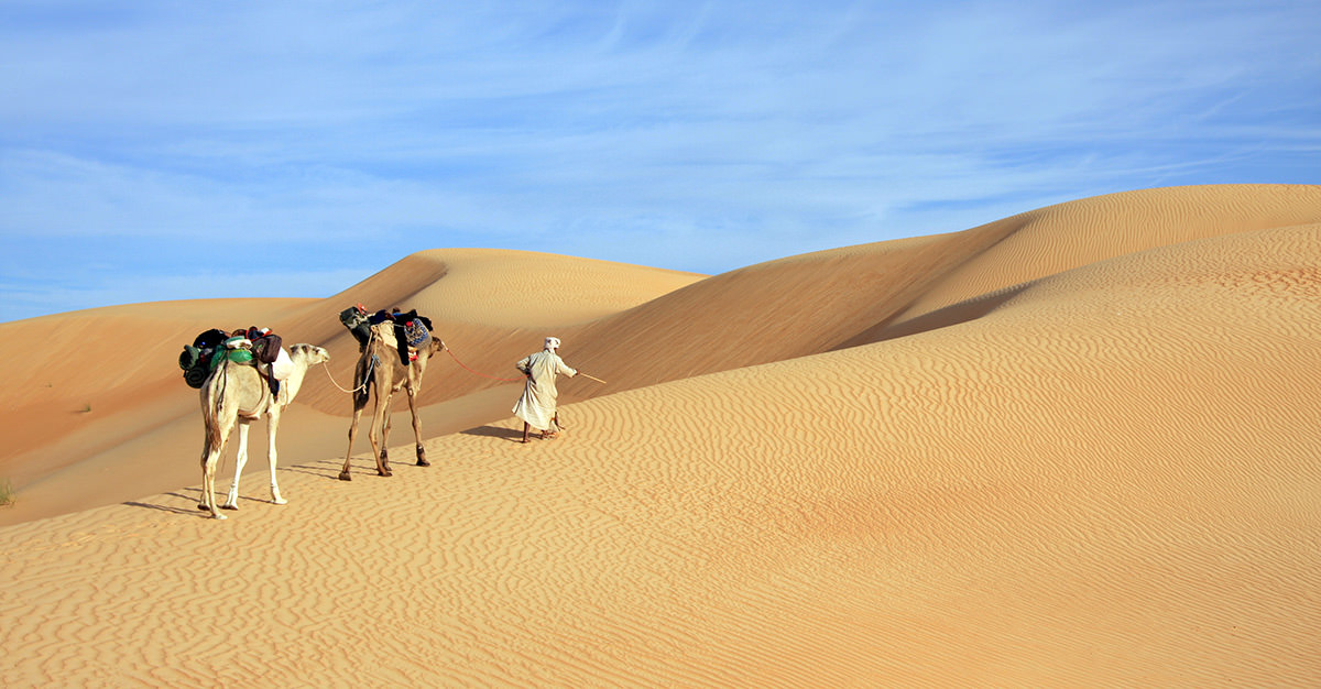 Mauritania is a fantastic destination with so much to do.