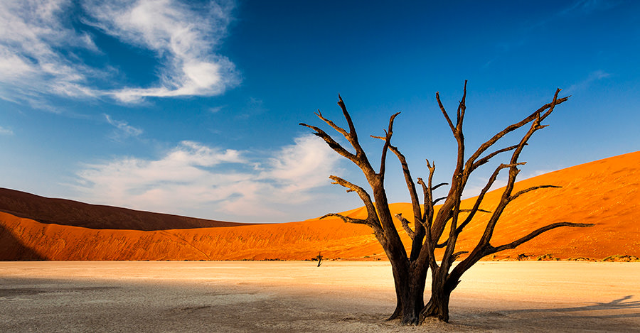 Namibia's deserts are beautiful and offer a variety of adventures. Make sure you explore them safely with travel vaccines and advice from Passport Health.