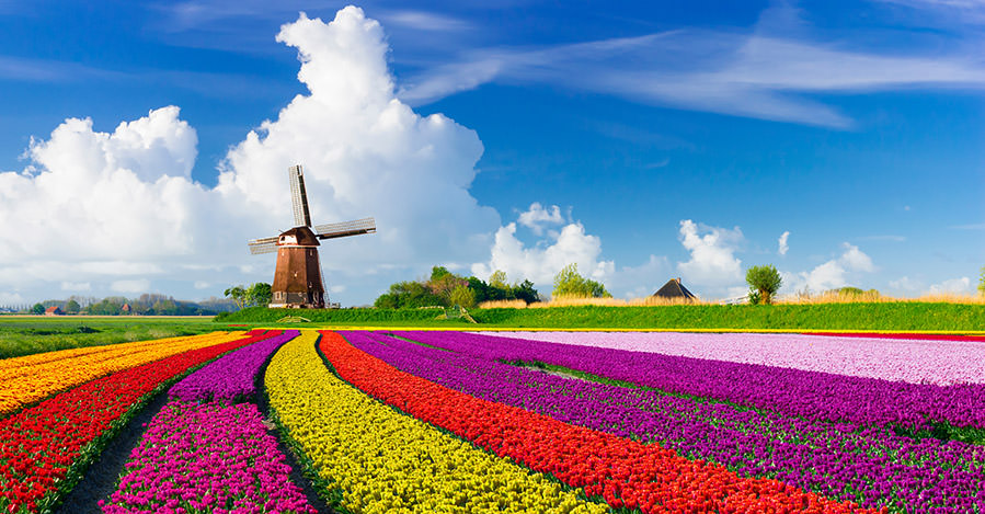 Netherlands has many urban and rural areas to explore.