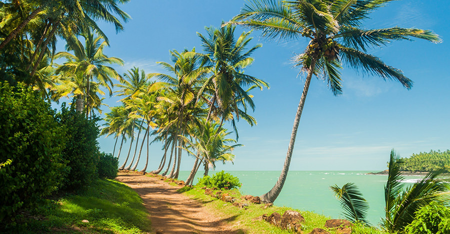 Travel safely to French Guinea with Passport Health's premiere travel vaccination services.