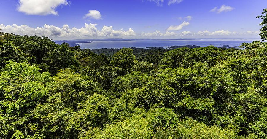 A fantastic destination, make sure you're prepared for your Suriname trip.