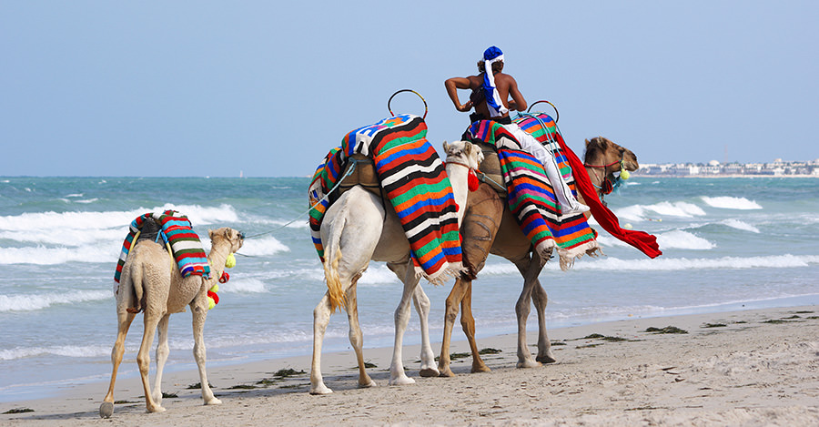 Tunisia is a great destination for all types of travellers.