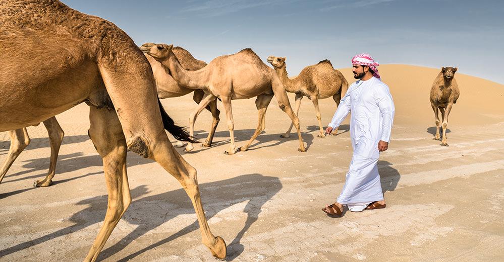 A fantatic destination, make sure you're prepared for your Yemen trip.