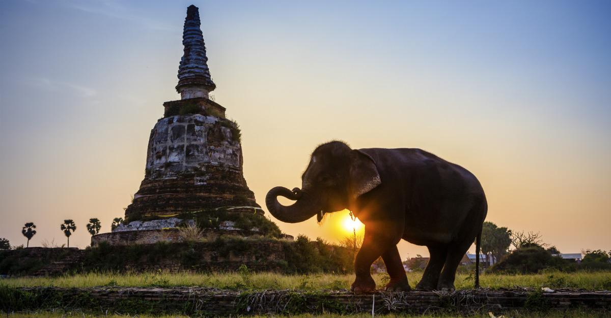 La Thaïlande est merveilleuse, mais requiert quelques précautions pour la visiter en santé.