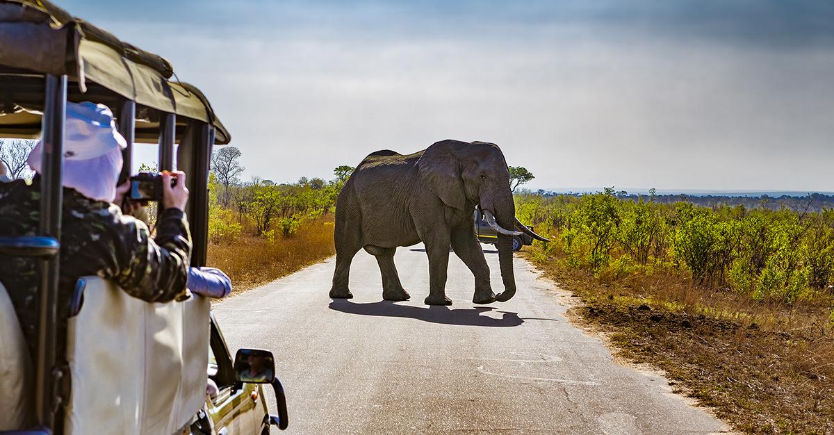 ¡Prepárate para viajar a Sudáfrica!
