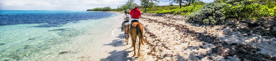 The Caribbean and Northern America provide a wide variety of environments, peoples and cultures to explore.