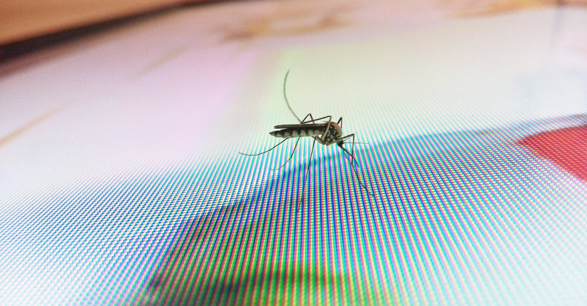 West Nile virus will soon break records in the United States.