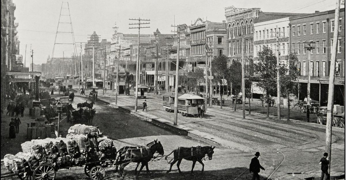 For a century, yellow fever terrorized citizens in New Orleans.