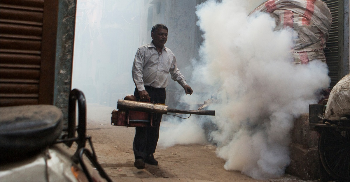 A higher temperature creates ideal conditions for mosquitoes in India.