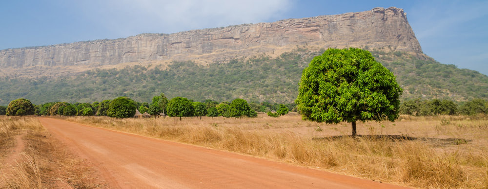 Travel safely to Guinea with Passport Health's travel vaccinations and advice.