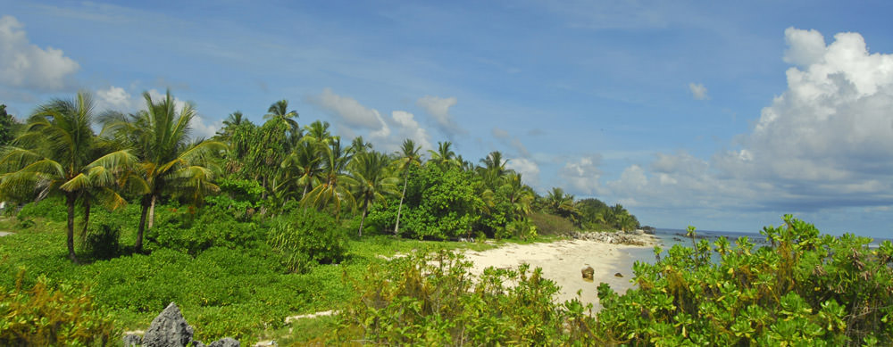 Travel safely to Nauru with Passport Health's travel vaccinations and advice.