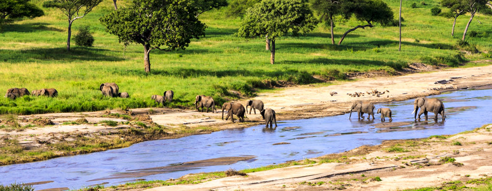 Travel safely to Tanzania with Passport Health's travel vaccinations and advice.