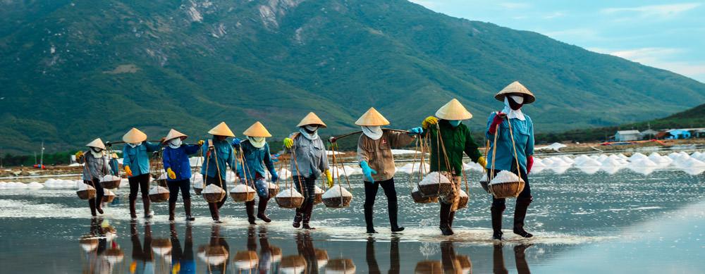 「vietnam」的圖片搜尋結果