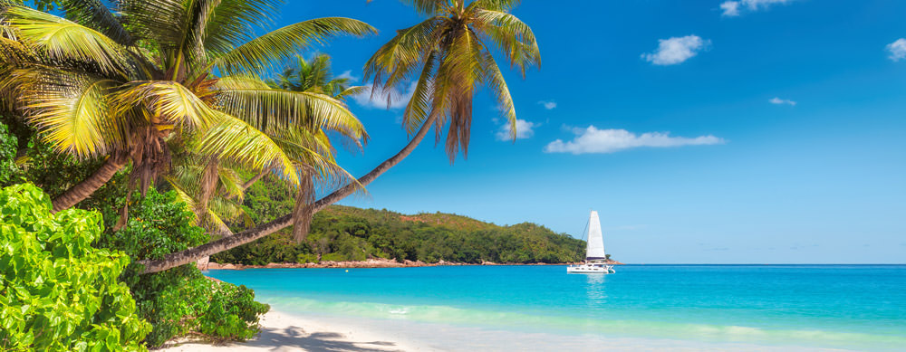 Jamaica tiene de todo para explorar. Asegúrate de ir en forma segura con tus vacunas de viaje y los consejos de Passport Health.
