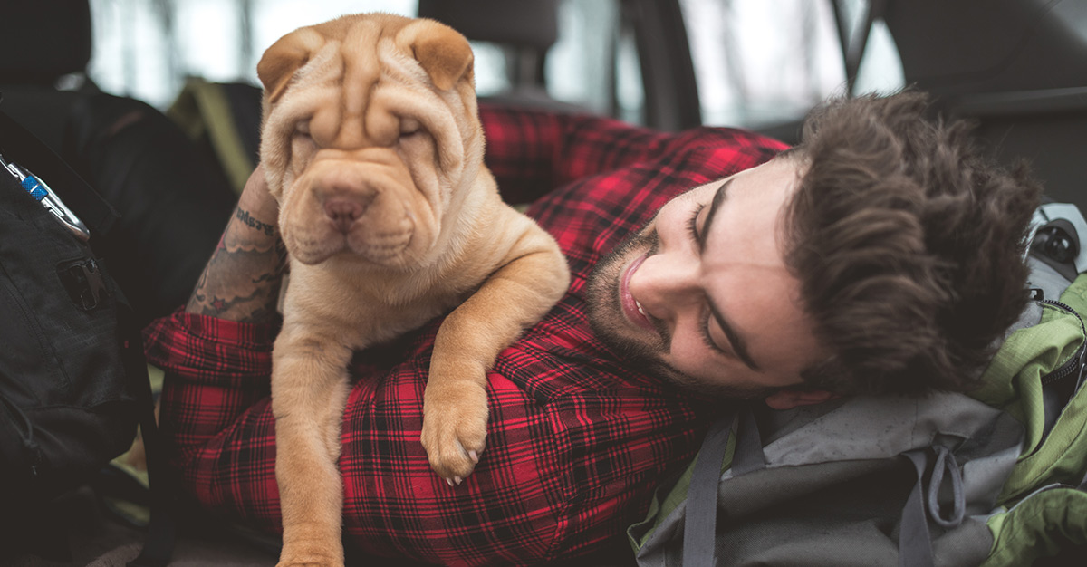 Las 9 razas de perro más raras del mundo.